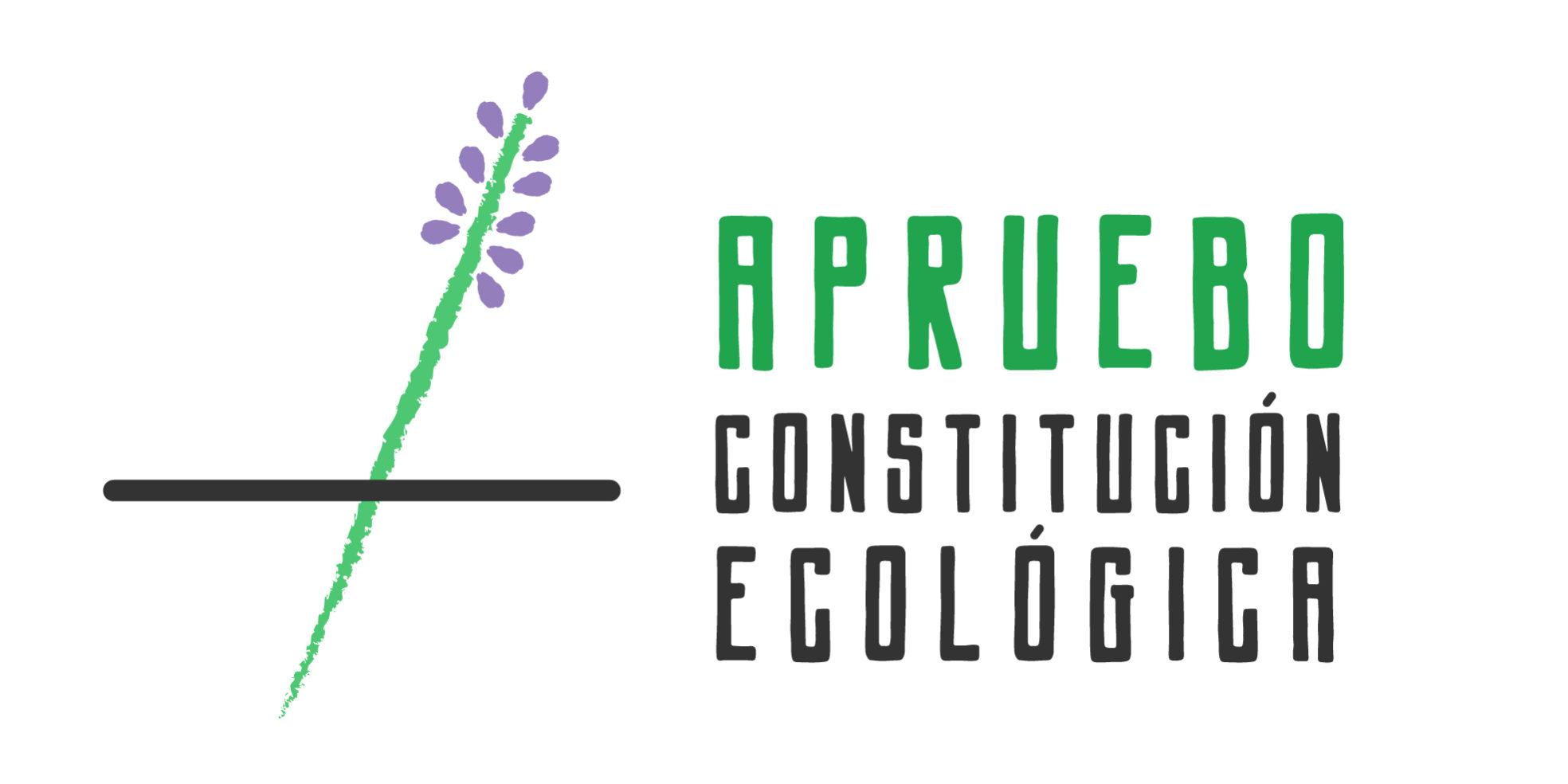 SCAC Chile se presenta en la franja por el plebiscito para avanzar hacia una «Constitución ecológica»
